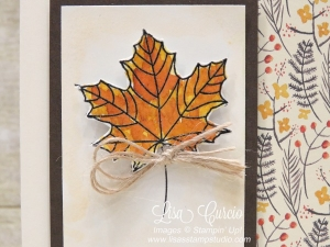 Close up photo of a fall maple leaf beautifully watercolored with tones for fall. Stampin' Up!'s Colorful Season stamp set.