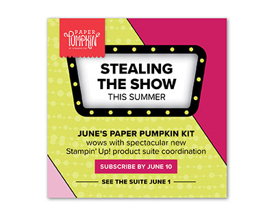Stealing the Show June 2018 Paper Pumpkin kit coordinates with new catalog suite of products. Lisa's Stamp Studio