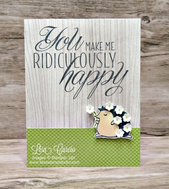 This adorable hedgehog is covered in small flowers borders on a strip of lime green designer paper. Hedgehugs by Stampin' Up!