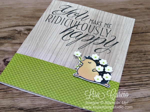 This adorable hedgehog is covered in small flowers borders on a strip of lime green designer paper. Hedgehugs by Stampin' Up! Aerial view.