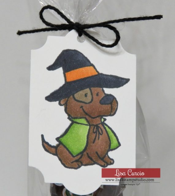 Video tutorial! Halloween party favors featuring Trick or Tweet stamp set. Stampin' Up! Close up of witch/dog.