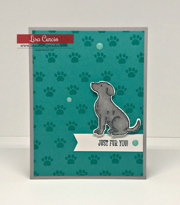 most-adorable-happy-tails-greeting-cards