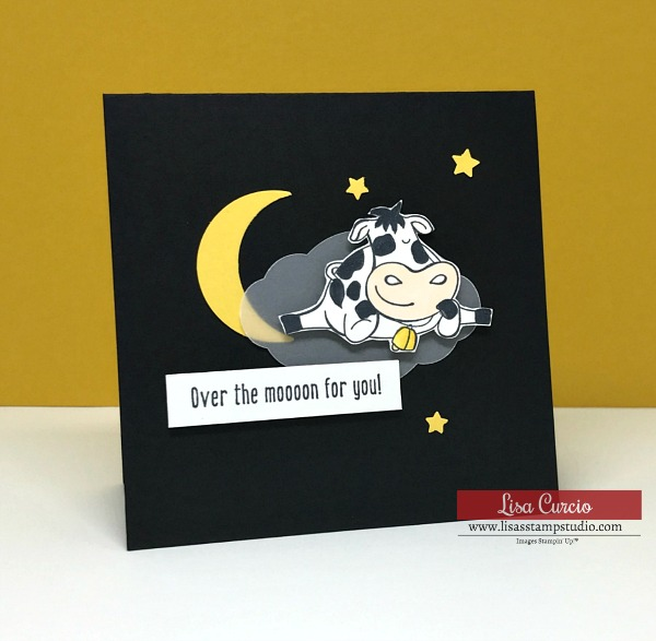 Do You Want an Easy Way to Use Vellum on Greeting Cards?