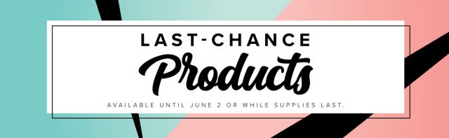 Stampin-up-last-chance-products-in-lisas-stamp-studio-store