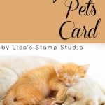 pampered-pets-card-by-lisa-curcio-lisas-stamp-studio