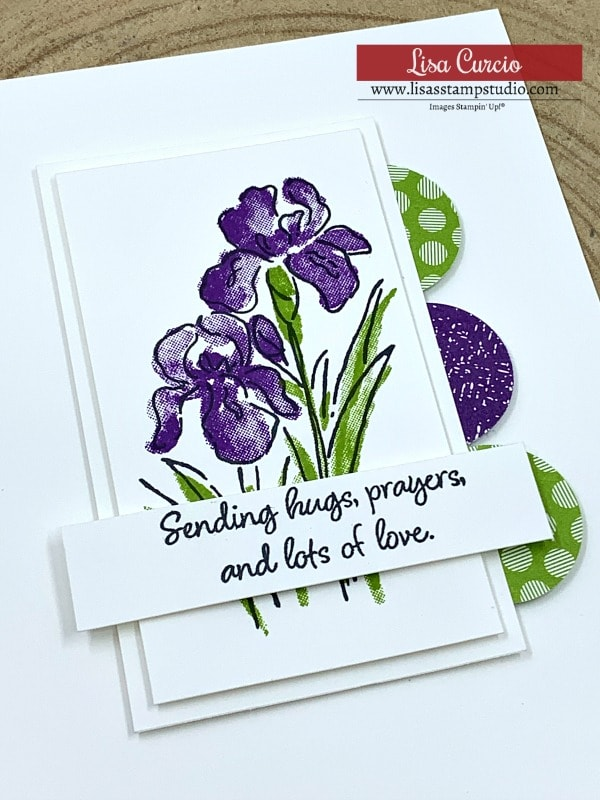 card-layout-with-iris-flowers-in-purple