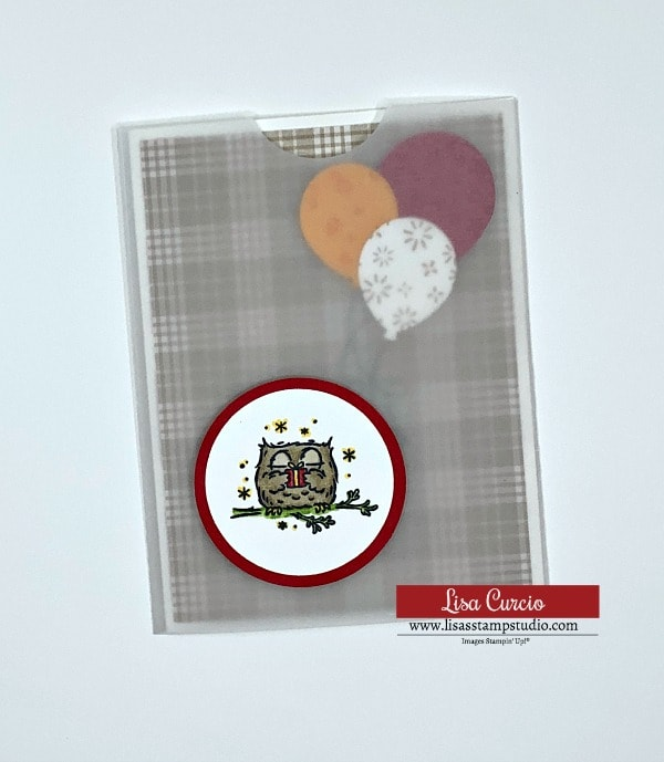 vellum-wrap-card-birthday-card-to-make-with-owl-and-balloons