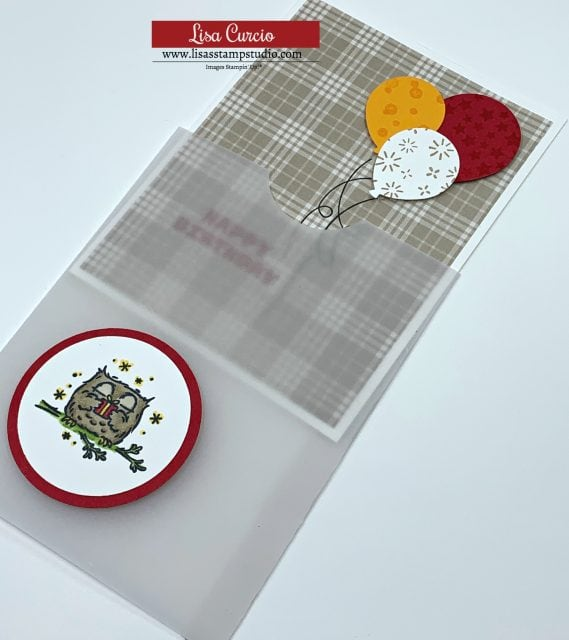 vellum-wrap-card-pull-out-card-easy-to-make-greeting-card