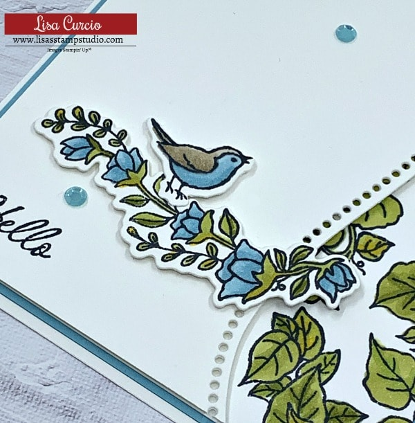 The Quite Curvy Stamp set by Stampin' Up! has images you can color