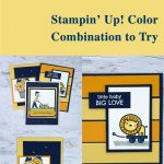 Stampin' Up! Color Combination to Try